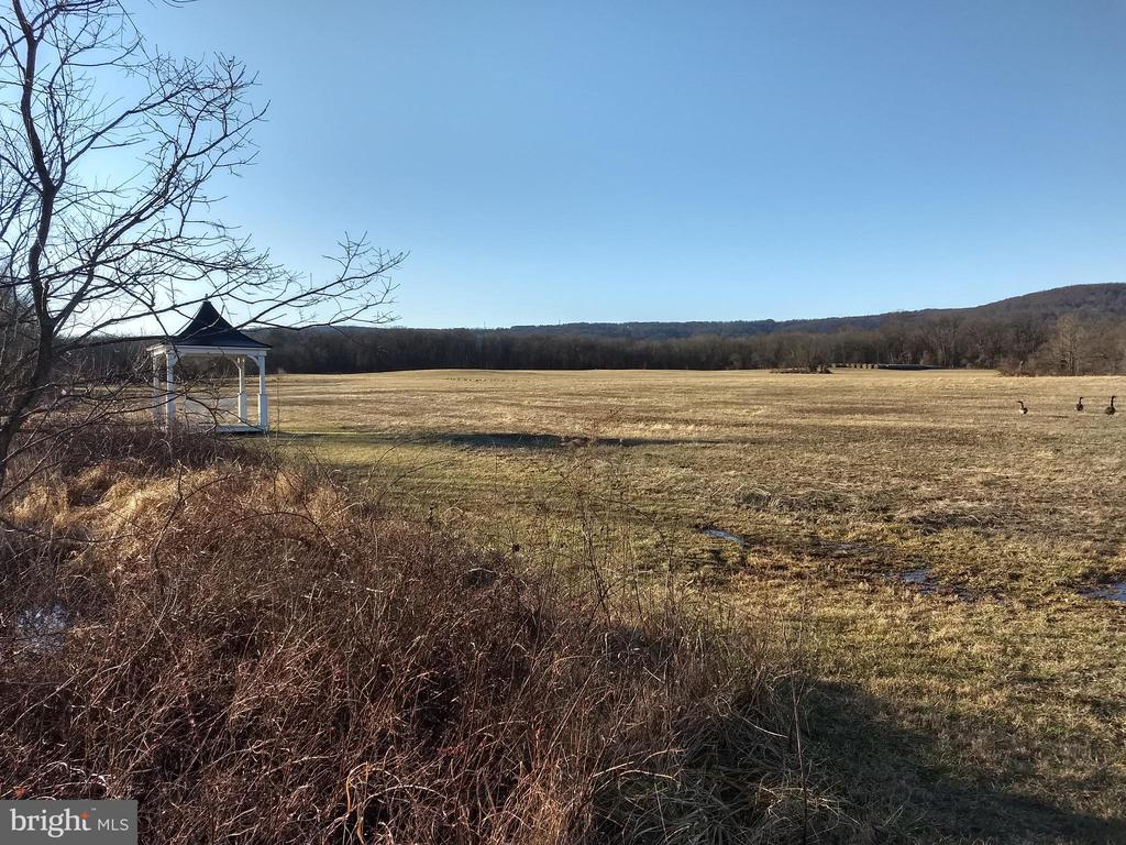 un-fenced land behind the pond - 20775 AIRMONT RD, BLUEMONT