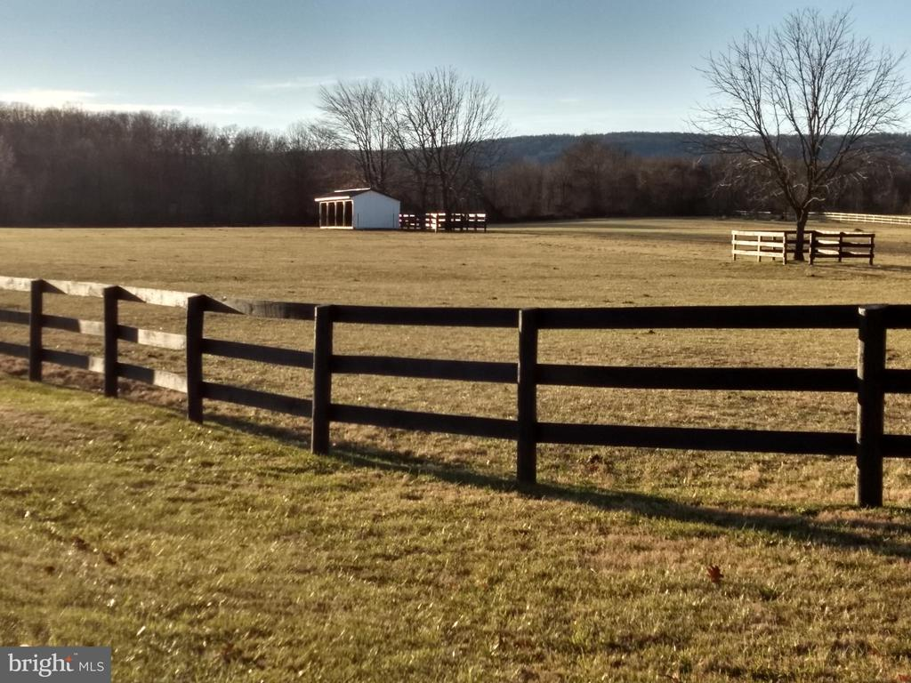 front paddock and run -in shed - 20775 AIRMONT RD, BLUEMONT
