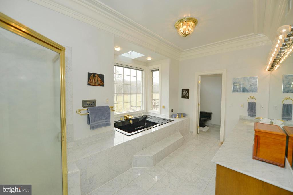 Master bath - 37120 DEVON WICK LN, PURCELLVILLE