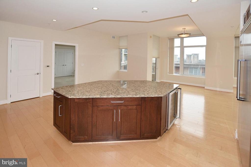 KITCHEN COUNTER TOP, RECESSED LIGHTS - 8220 CRESTWOOD HEIGHTS DRIVE #1818, MCLEAN