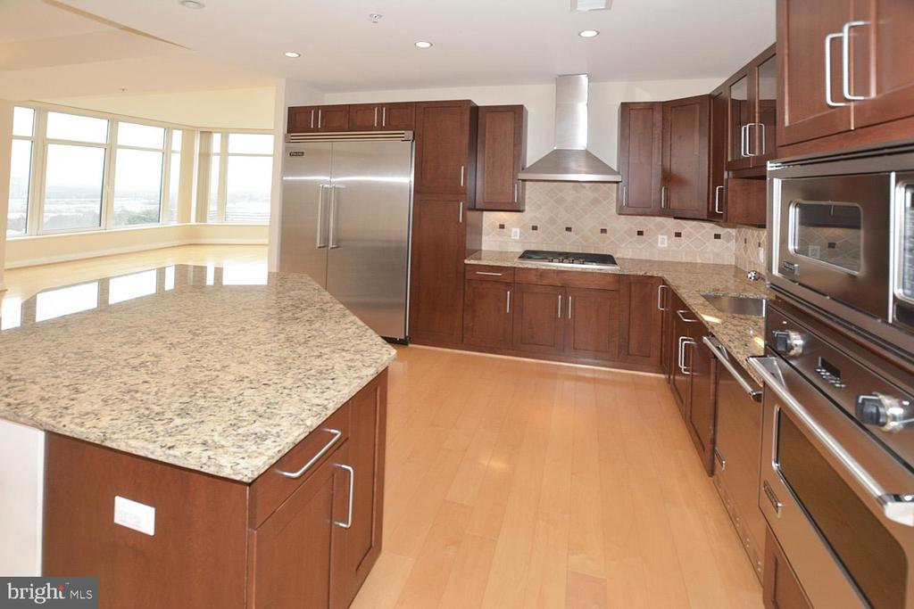 GRANITE COUNTER TOPS, TRAEGER STAINLESS APPLIANCES - 8220 CRESTWOOD HEIGHTS DRIVE #1818, MCLEAN