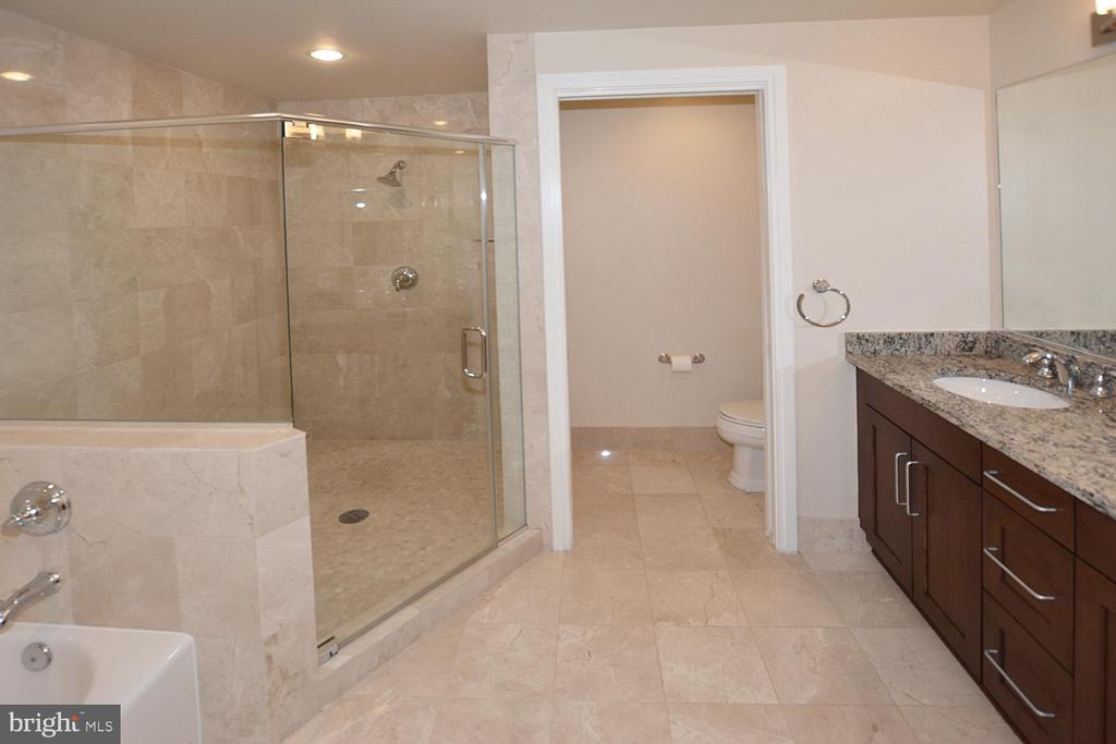 MASTER BATHROOM WITH LARGE SHOWER  RECESSED LIGHTS - 8220 CRESTWOOD HEIGHTS DRIVE #1818, MCLEAN
