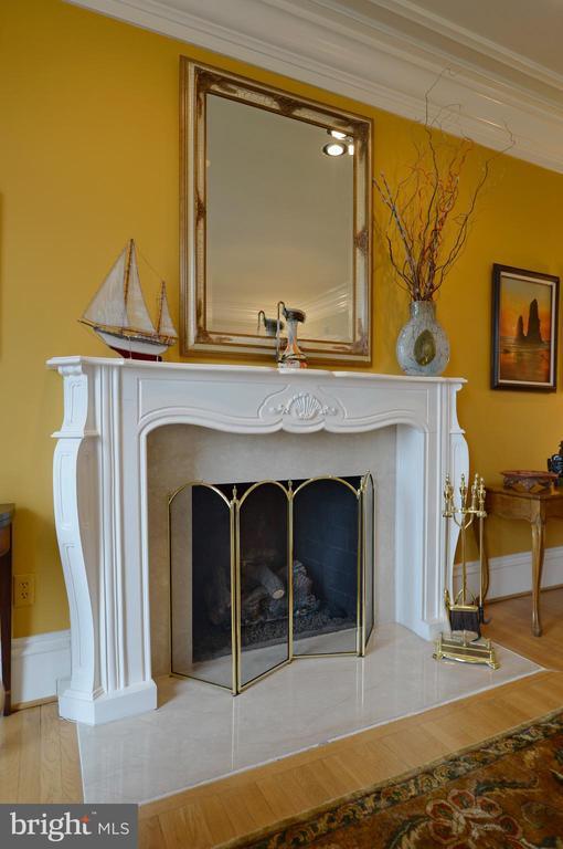 Living room gas fireplace - 37120 DEVON WICK LN, PURCELLVILLE