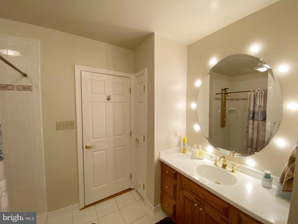 Lower level full bath 1 - 37120 DEVON WICK LN, PURCELLVILLE