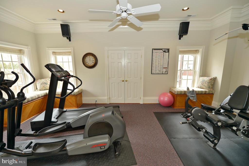 Lower level 6th bedroom/exercise room - 37120 DEVON WICK LN, PURCELLVILLE