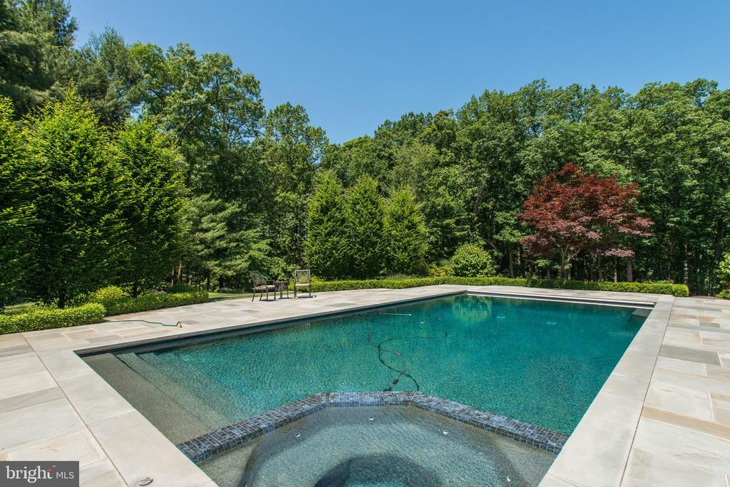 Pool and Hot Tub - 1198 WINDROCK DR, MCLEAN