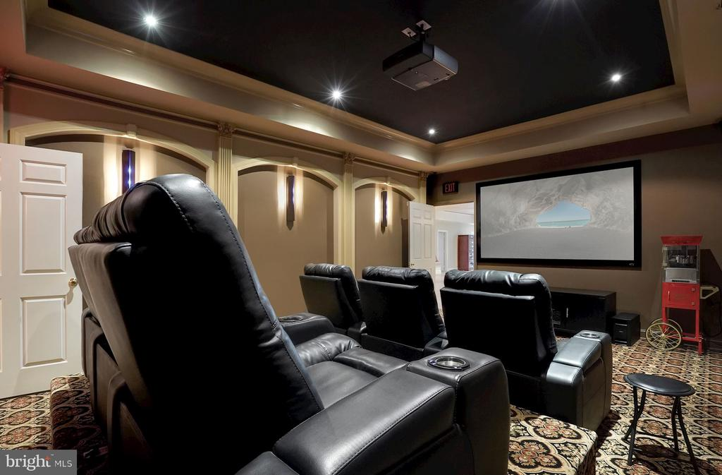 Cinema / Theater - 1198 WINDROCK DR, MCLEAN
