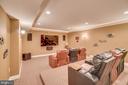 Lower level media room - 20190 KIAWAH ISLAND DR, ASHBURN