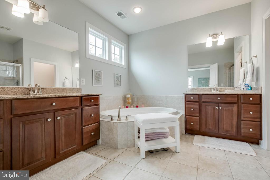 Master bathroom! - 25983 KIMBERLY ROSE DR, CHANTILLY