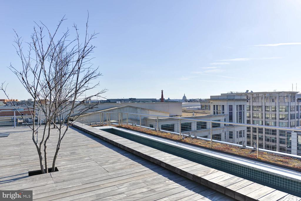 Community rooftop - 920 I ST NW #710, WASHINGTON