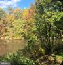 View in the Fall - 2014 SWANS NECK WAY, RESTON