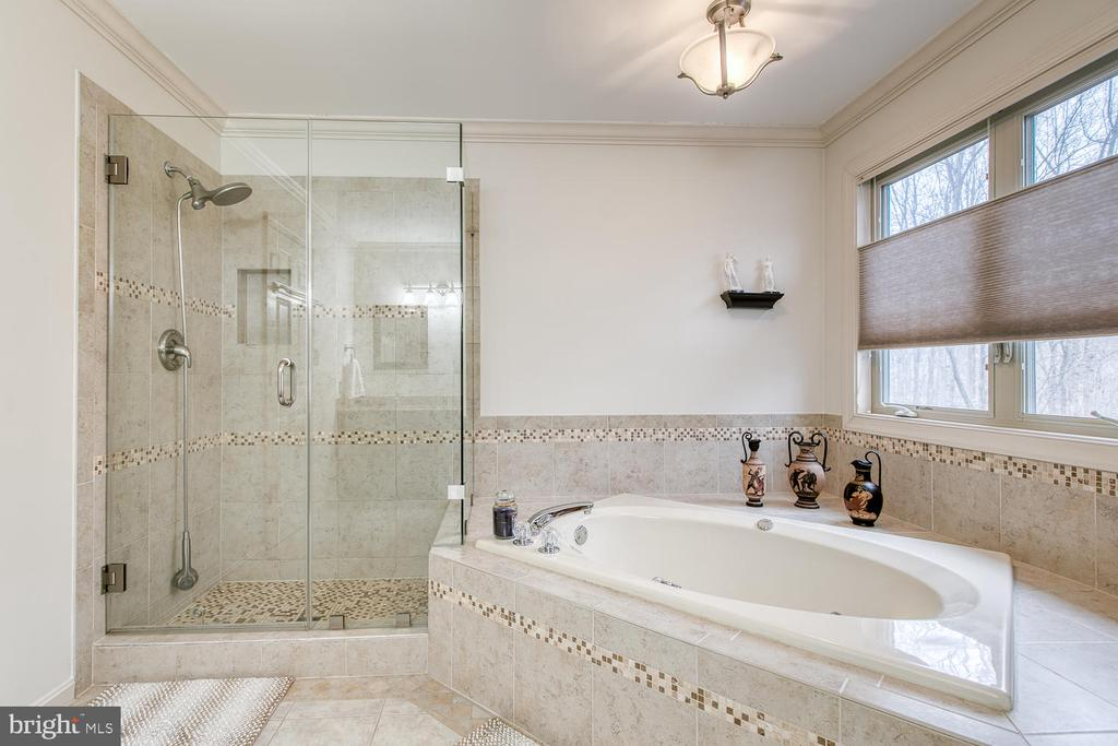 Master bath with frameless shower and Jacuzzi tub - 131 EUSTACE RD, STAFFORD