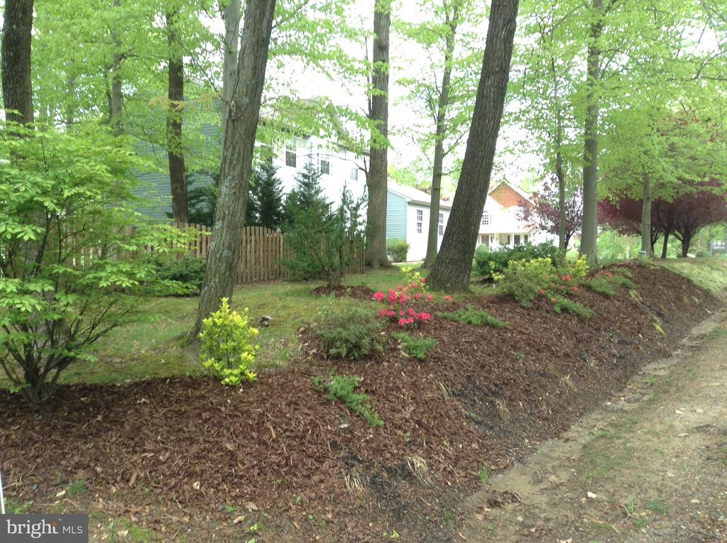 Spring/Summer front lawn - 131 EUSTACE RD, STAFFORD