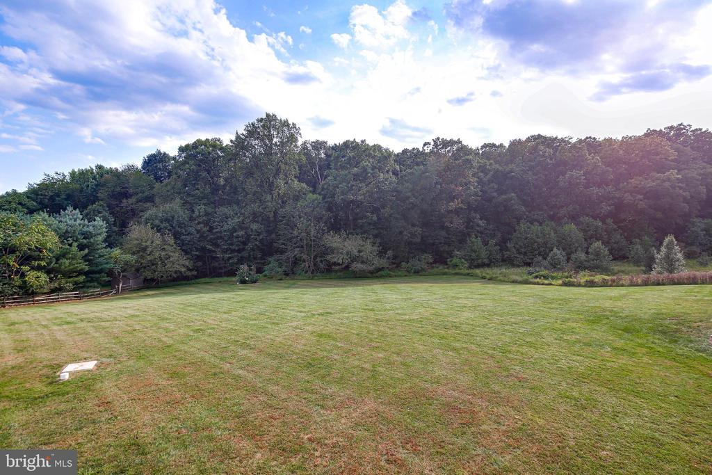 GROUNDS - 17532 COUNTRY VIEW WAY, MOUNT AIRY