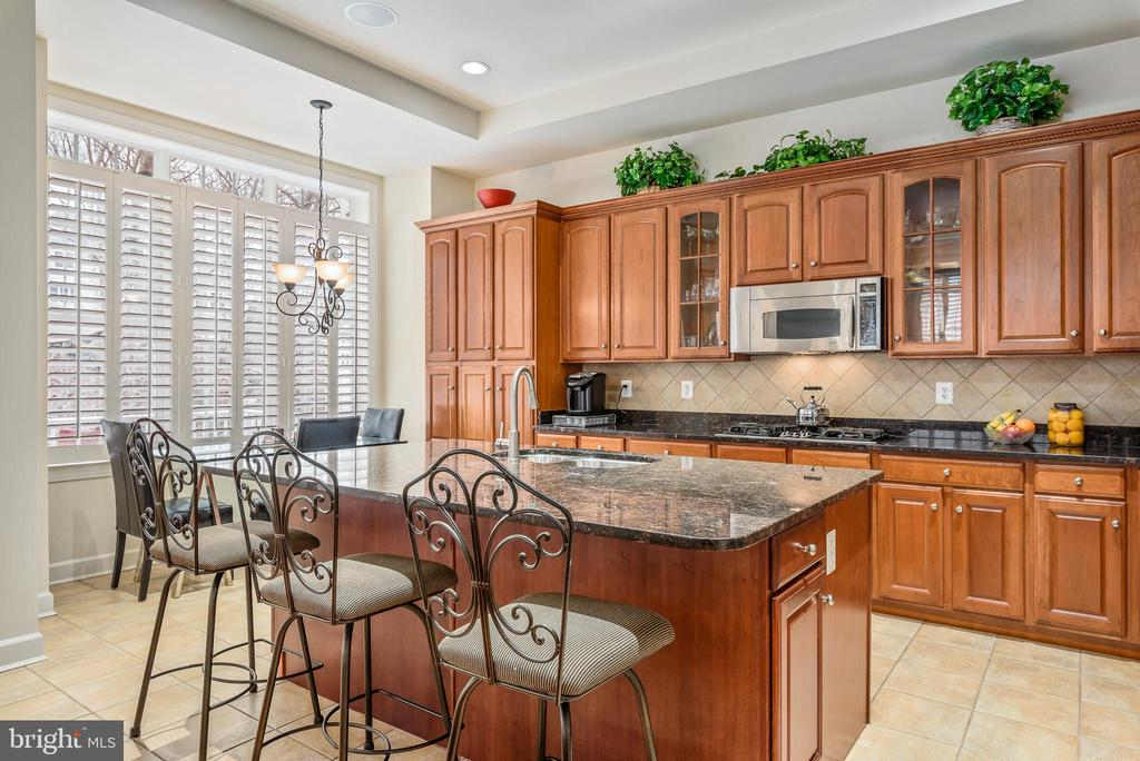 Gourmet kitchen has island eating - 18215 CYPRESS POINT TER, LEESBURG