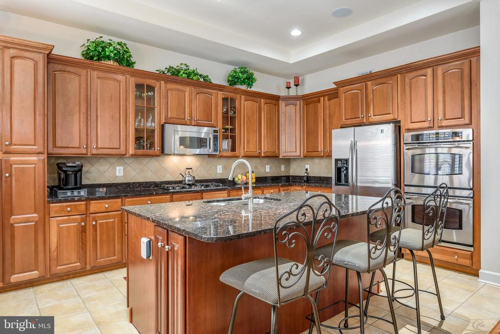 Kitchen has stainless appliances - 18215 CYPRESS POINT TER, LEESBURG