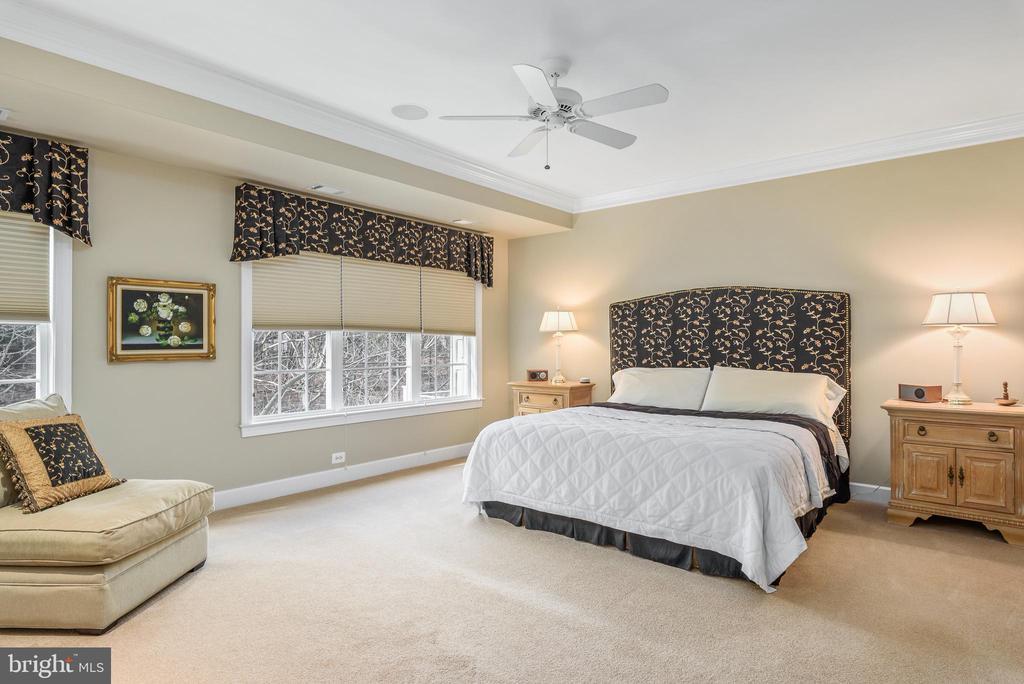 Master bedroom - 18215 CYPRESS POINT TER, LEESBURG