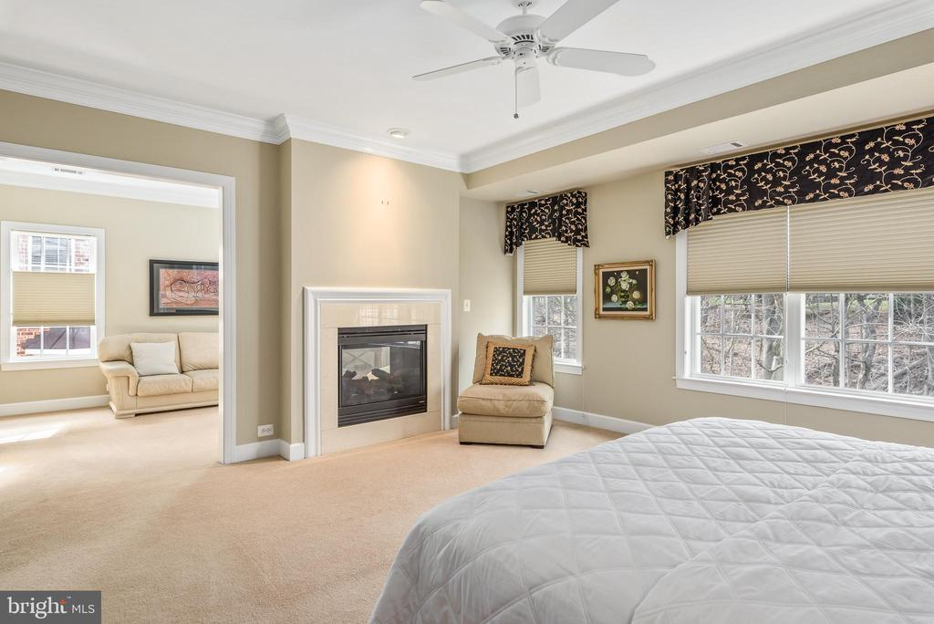 Master bedroom fireplace - 18215 CYPRESS POINT TER, LEESBURG