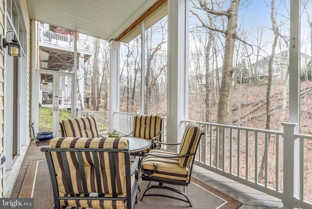 Screened porch - 18215 CYPRESS POINT TER, LEESBURG