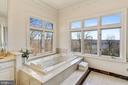 Master Bath - Corner Spa Tub with a View - 703 POTOMAC KNOLLS DR, MCLEAN