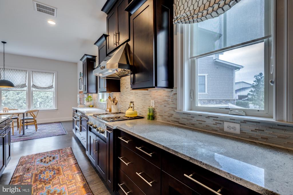 Counter space galore and upgraded cabinets - 23734 HEATHER MEWS DR, ASHBURN