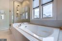 Luxury owner's bath with frameless shower - 23734 HEATHER MEWS DR, ASHBURN