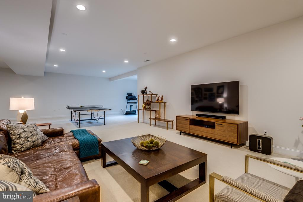 Kick back, watch a game, or just relax - 23734 HEATHER MEWS DR, ASHBURN