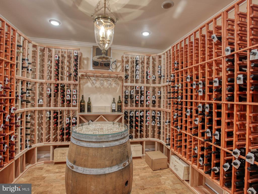 Professional Wine Roomw/ Cork Floor - 641 STONYMEADE DR, WINCHESTER
