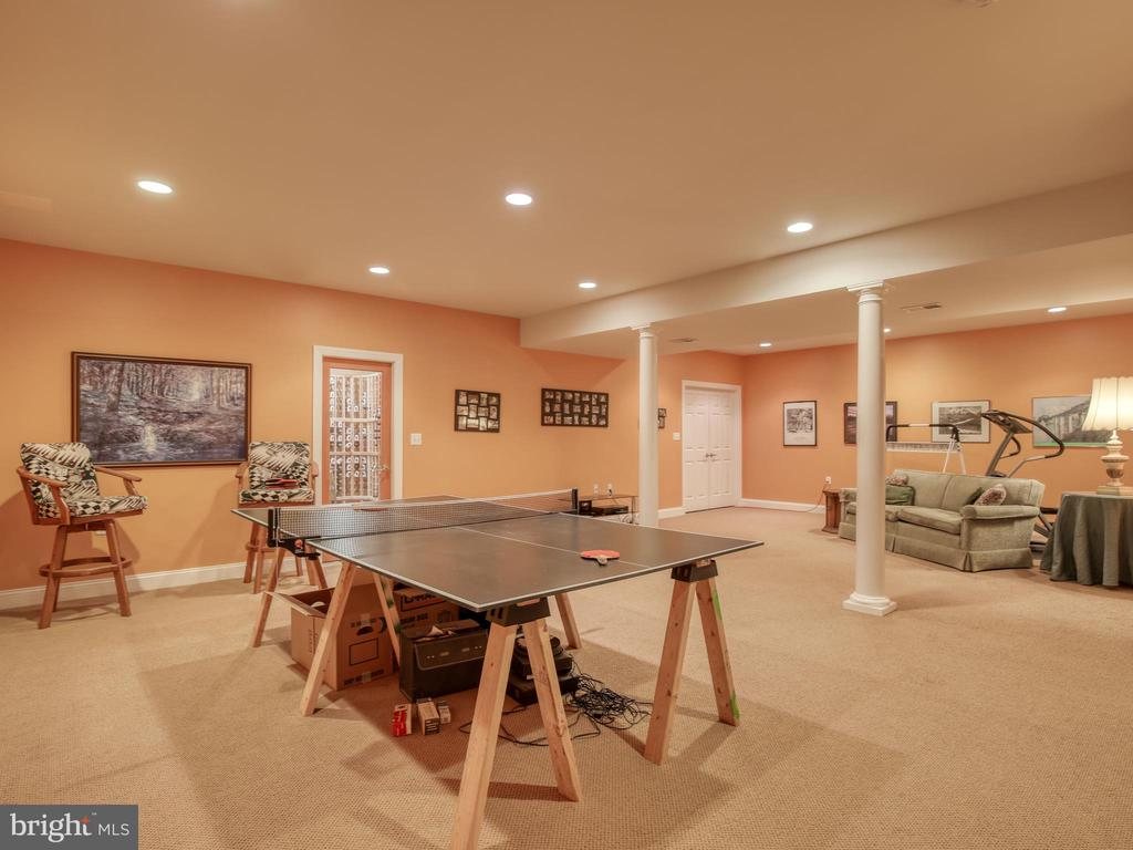 Lower Level Game Room - 641 STONYMEADE DR, WINCHESTER