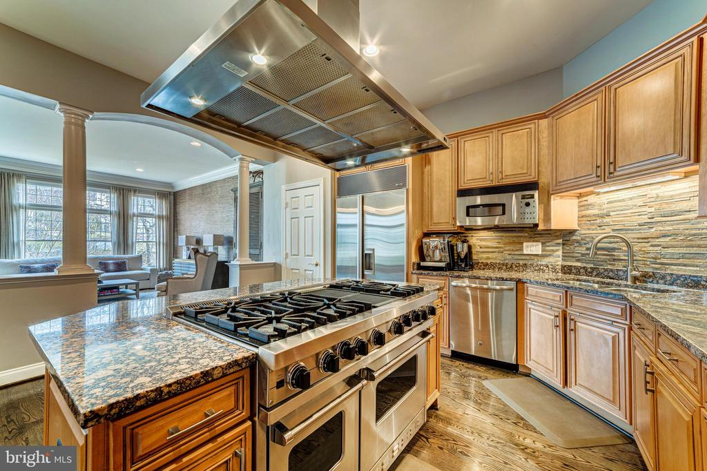 Luxury kitchen - 18212 CYPRESS POINT TER, LEESBURG