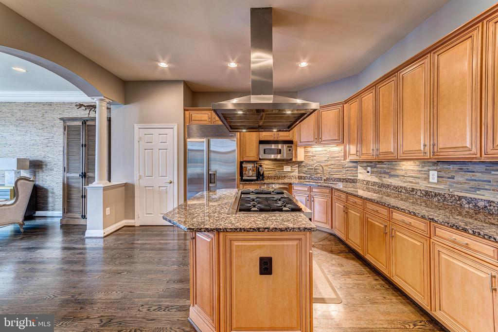 Designer kitchen with granite and backsplash - 18212 CYPRESS POINT TER, LEESBURG