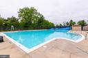 Sparkling blue community pool - 18212 CYPRESS POINT TER, LEESBURG