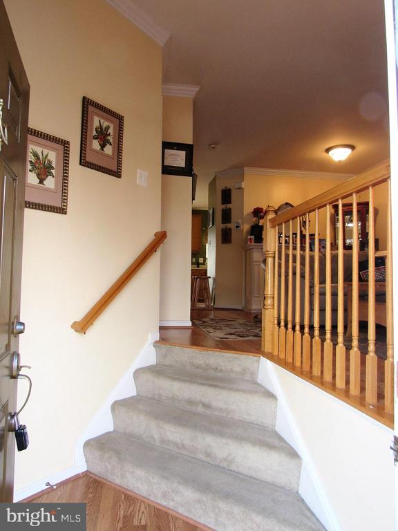 Foyer - 43451 PARISH ST, CHANTILLY