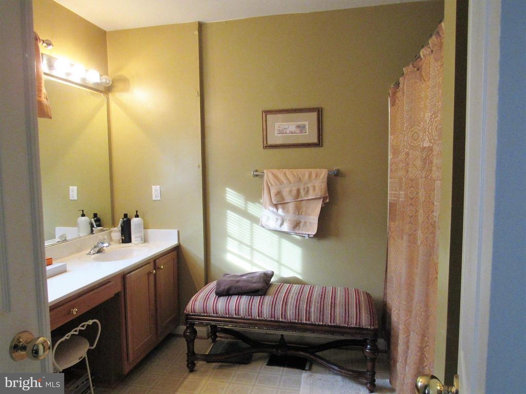 Master Bath - 43451 PARISH ST, CHANTILLY