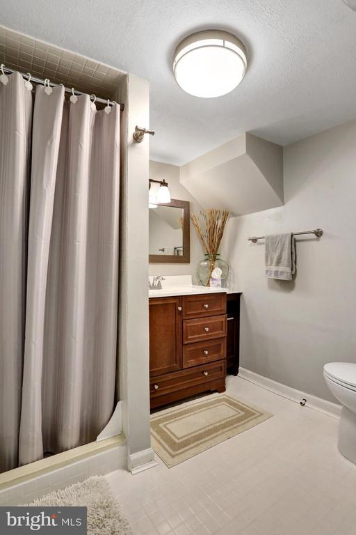 Basement Full Bath - 45550 LAKESIDE DR, STERLING