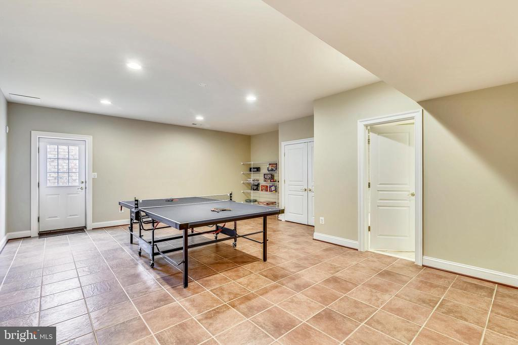 Lower Level Recreation Room - 19852 SOMERCOTE LN, LEESBURG