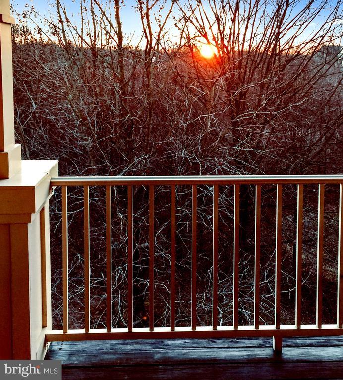 Amazing evening sun! - 11824 ETON MANOR DR #302, GERMANTOWN