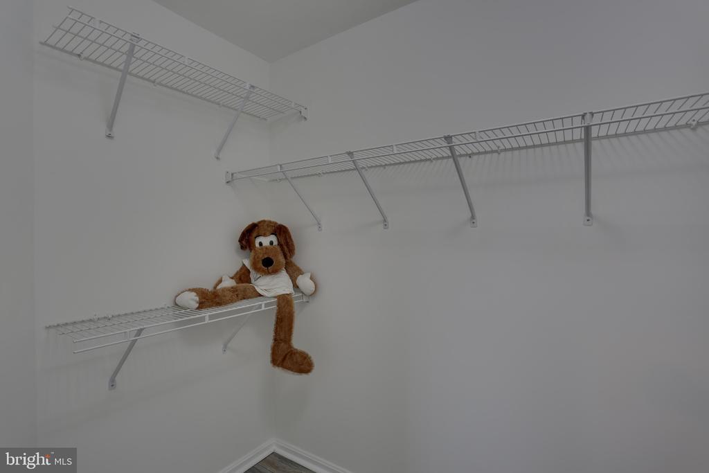 2nd Bedroom walk-in closet. - 11824 ETON MANOR DR #302, GERMANTOWN
