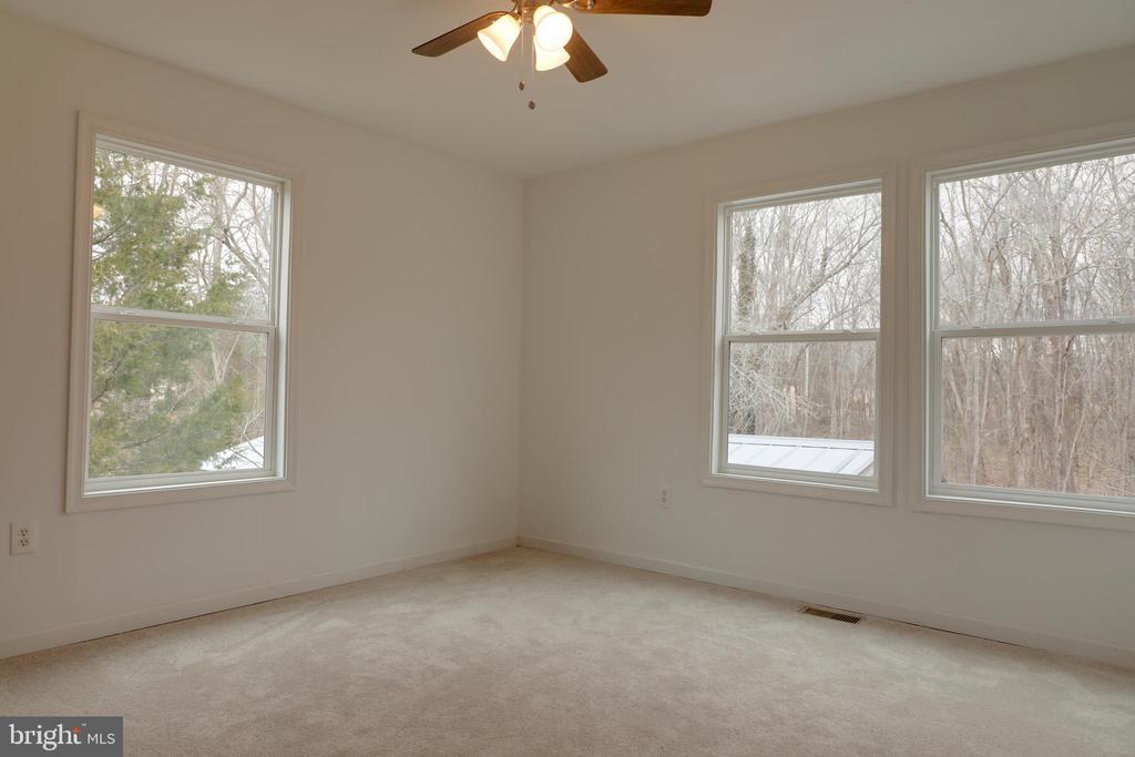Master bedroom w/ carpet - 33321 CONSTITUTION HWY, LOCUST GROVE