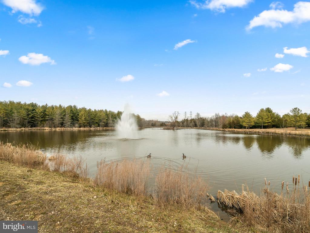 Take a stroll around the lake - 42545 KERSHAW PL, CHANTILLY
