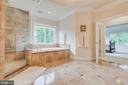 Master Bath:soaking tub and expansive Roman Shower - 3003 WEBER PL, OAKTON