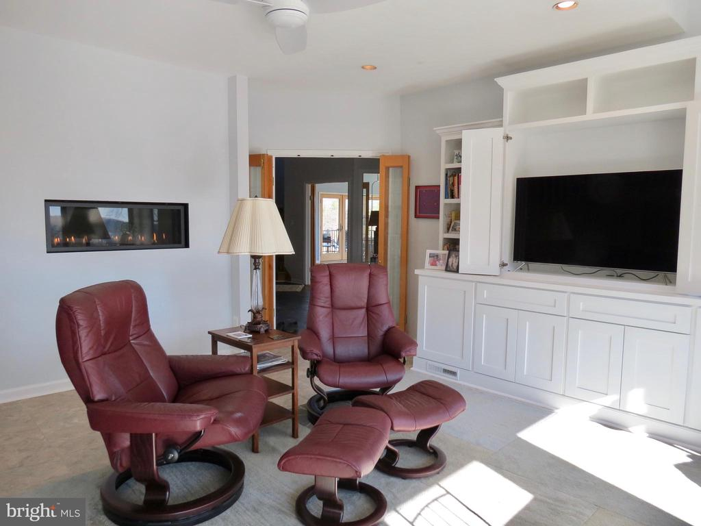 Family Room cabinets plus wall inset fireplace - 335 FODDERSTACK RD, WASHINGTON