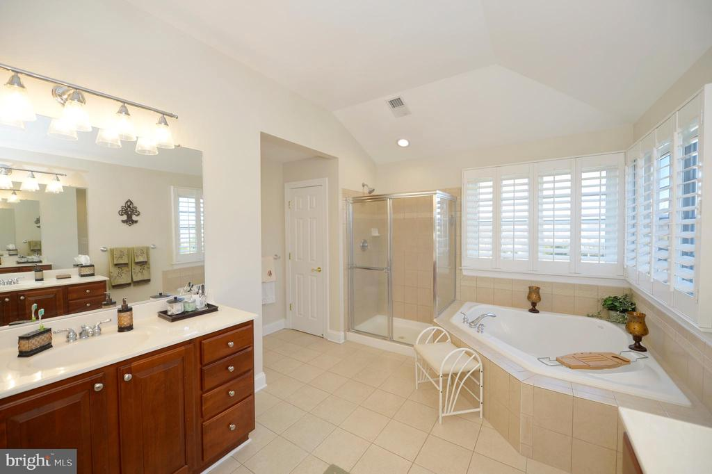 Luxurious Owners Bathroom - 37894 ST FRANCIS CT, PURCELLVILLE