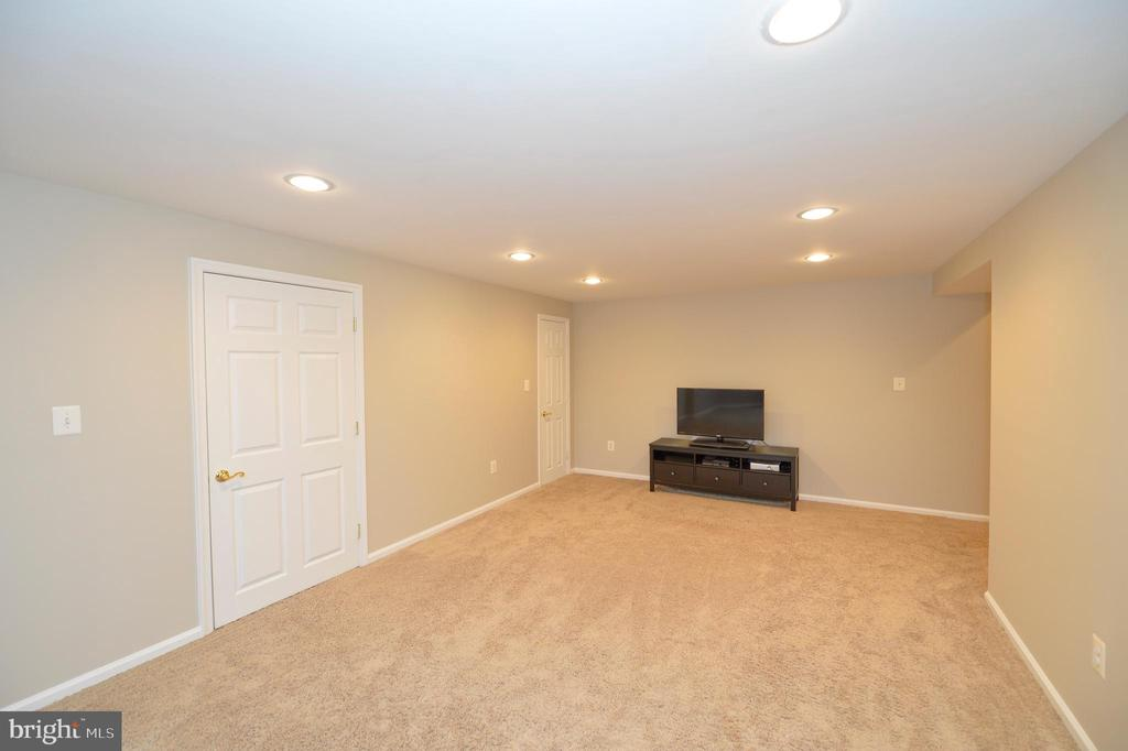 Lower Level Recreation Room - 37894 ST FRANCIS CT, PURCELLVILLE