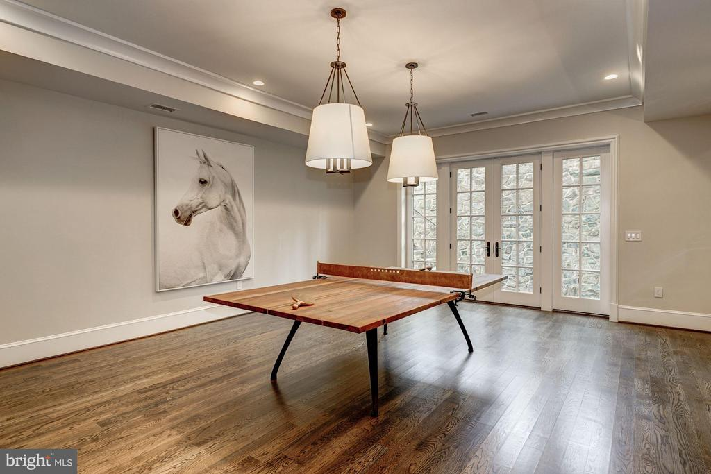 Game Room - 1418 KIRBY RD, MCLEAN