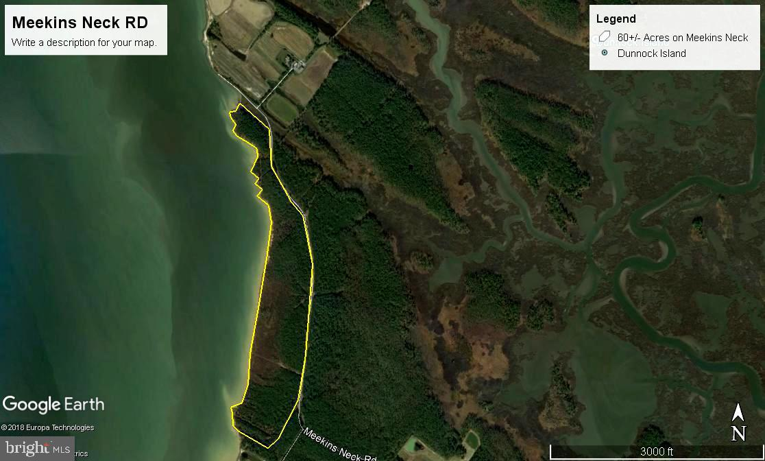 Excellent hunting potential.  Potential building site.  Extensive waterfront.  Sale includes two parcels.