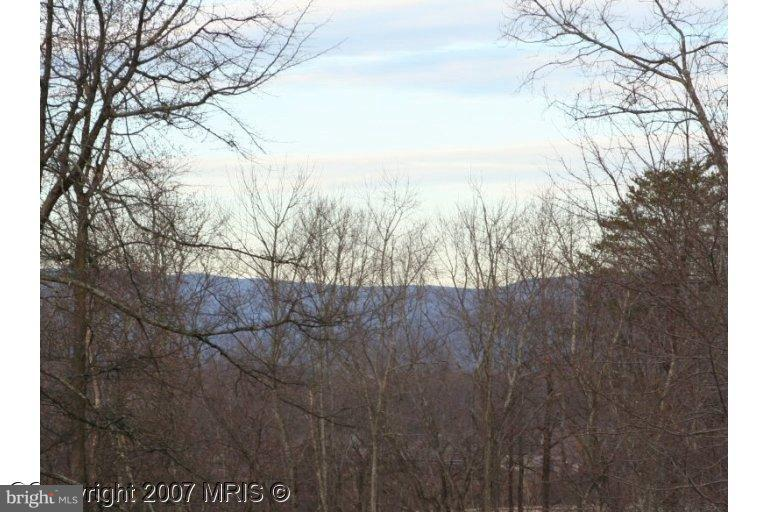 REPTON MILL ROAD, ARODA, VA 22709