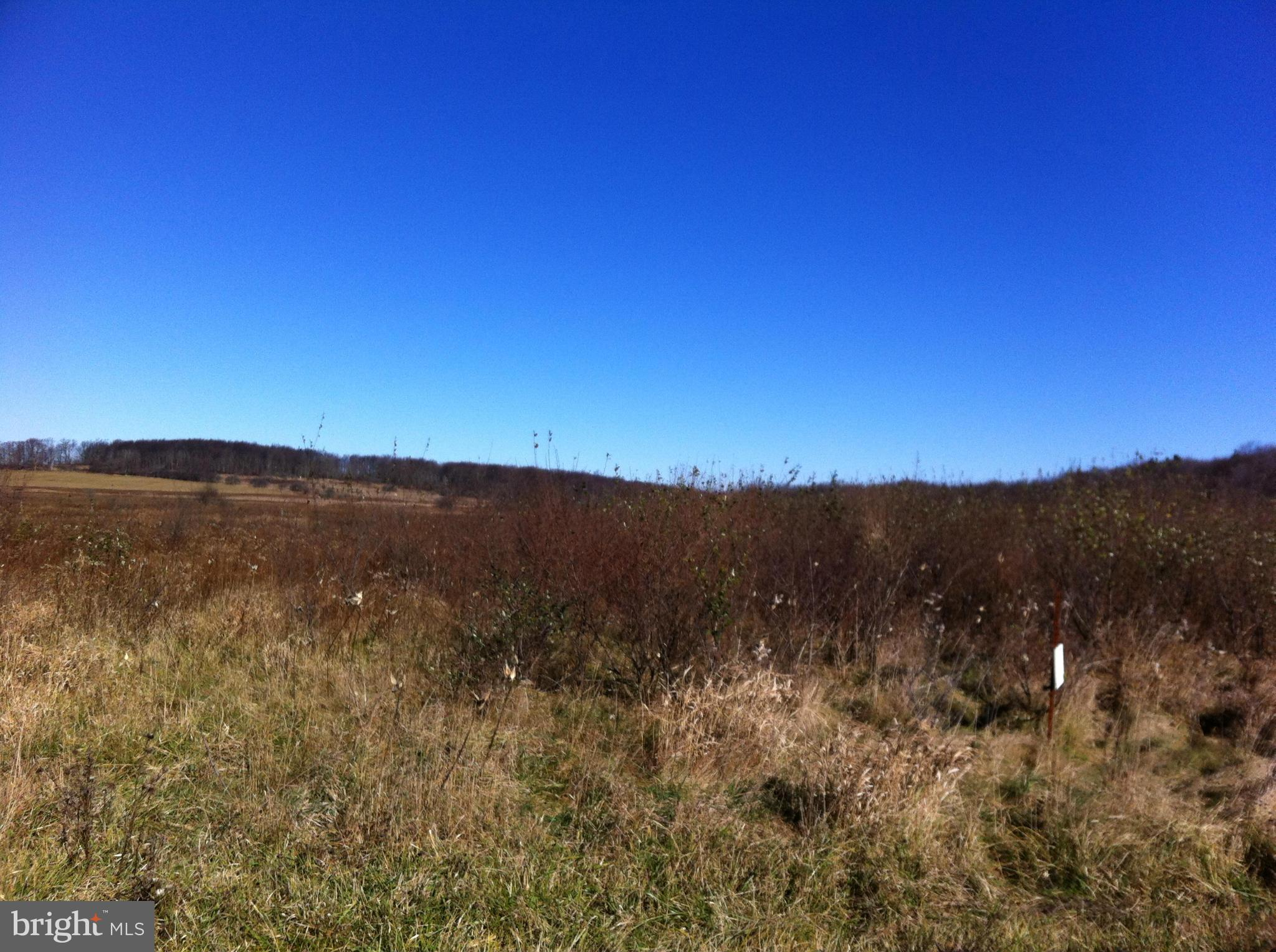 BISMARK ROAD, MOUNT STORM, WV 26739