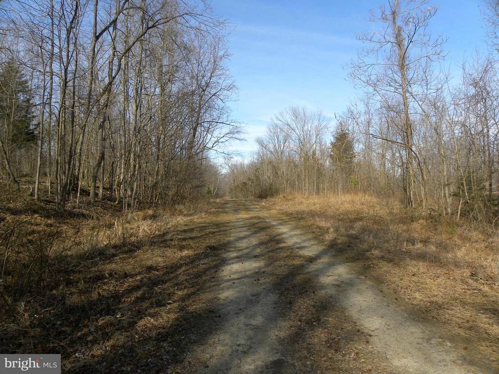 Tax records show 408+- acres. approximately 80-90 are being retained by owners because of access across marsh. New property boundry would be center line of marsh. Good high ground with development potential into lots and homes. Some lots have winter views of Potomac. Plats available to indicate boundries. Mixed hardwood forest with some VA pine. Purchaser responsible for rollback taxes.