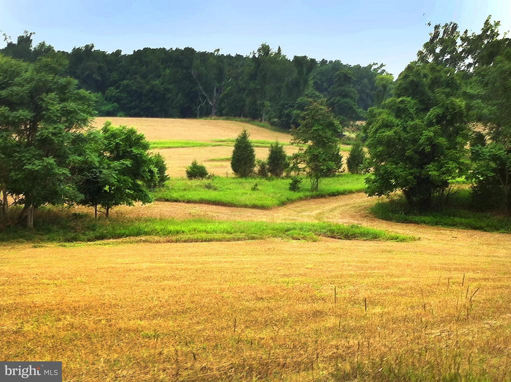 152 acre unrestricted farmland.  $45k drop. Priced now at $5,300/acre, . Development/recreational/residential/hunting/farmland protection potential.  Currently used for farming/hunting. Wildlife abound.  Large fields and woods.  Many fence rows/fields/sections.  Owner negotiable on retaining a 13 acre portion in NE corner to merge with existing land owned.  Well on site. Offers encouraged.